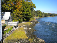 The Leaf Peepers are Coming
